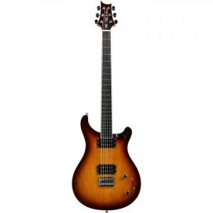Elektrische bariton gitaar