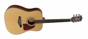 Richwood gitaar Master Series